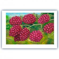 """Giclée-Druck FineArt Papier von Charles Kaufman: """"Eight Red Berries""""."""